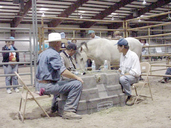 Three men sit on folding chairs in a medium sized pen. They play poker on the table in front of them--a table made from an over turned water trough. A mustang who is loose in the pen stands next to one of the men, nuzzling the table.